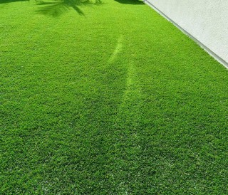 Synthetic Grass | GreenPlanet Kerala